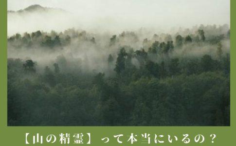本当にいる?【山の精霊】の正体・幽霊との違いを霊能者が解説!